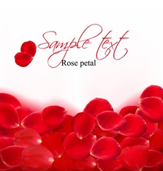 background of red rose petals vector image vector image