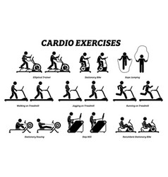 Cardio exercises and fitness training at gym vector