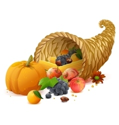 Cornucopia rich harvest on day of Thanksgiving vector