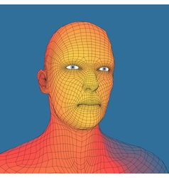 Head of the Person from a 3d Grid Human Head Wire vector image