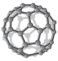 Molecular structure c60 buckyball vector