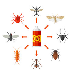 pest control with insecticide vector image