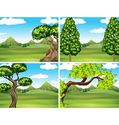 Scene with green grass and mountains vector image