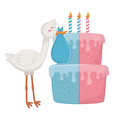 stork with birthday cake vector image