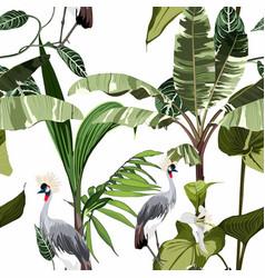 tropical botanical wild birds palm tree pattern vector image
