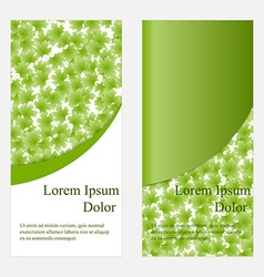 template flyer or invitation vector image