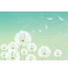Abstract background with flower dandelion vector image