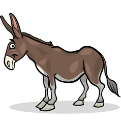 donkey farm animal cartoon vector image