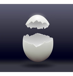 Egg split in half on a dark background vector
