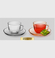 Glass cup transparent cup with tea vector