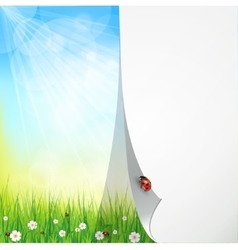 Green sunny natural background vector