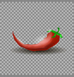 Natural hot red cayenne chili pepper vector
