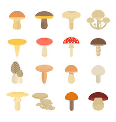Set of mushrooms vector