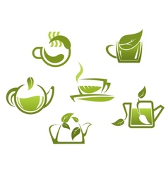 Green tea symbols and icons vector image vector image