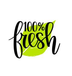 100 fresh lettering design vector image