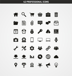 42 PROFESSIONAL ICONS vector