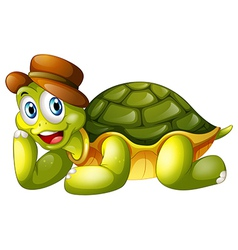 A smiling turtle lying down vector