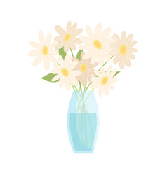 Beautiful chamomile flowers in glass vase bouquet vector