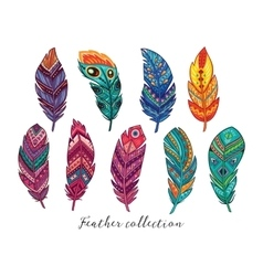 Colorful feathers set in ethnic style vector