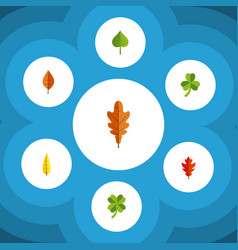 Flat icon foliage set of foliage hickory leaf vector