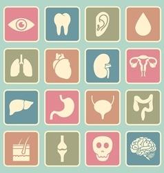 human organs icon vector image