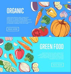 Natural healthy food flyers with vegetables vector