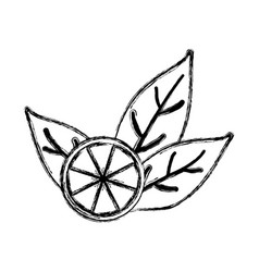 Natural lemon tea vector