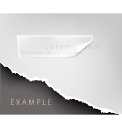 torn paper hole in the notebook sheet i vector image