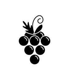Contour delicious and healthy grape fruit vector