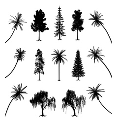 Trees with roots and palms vector
