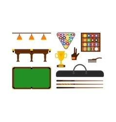 Billiard Game Equipment Set vector image