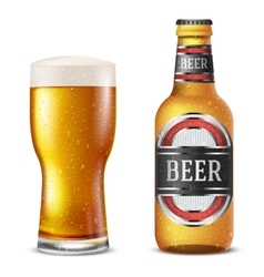 Bottle beer vector image