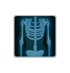 Chest x-ray icon image vector