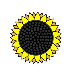 sunflower icon on a white isolated background vector image