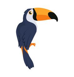 Toucan bird cartoon icon in flat design vector