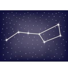 constellation Ursa Major vector image