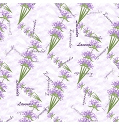 Romantic vintage seamless pattern with lavender vector image