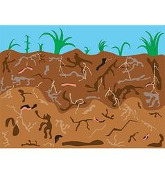 Worms underground vector image