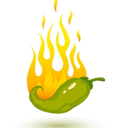 green chili fire shadow vector image