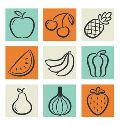 icons set fruits and vegetables vector image