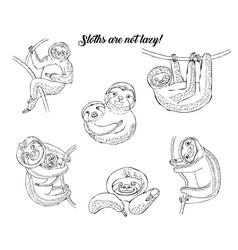 Sloths animals sketches hand drawn background vector