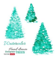 Watercolor evergreen trees vector