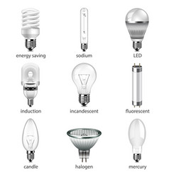 different lightbulbs icons set vector image