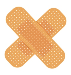 adhesive bandage vector image