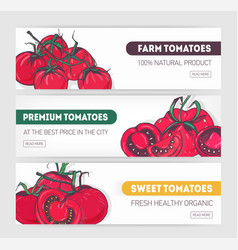 bundle of horizontal web banner templates with vector image