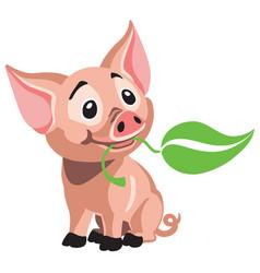 Cartoon piglet vector