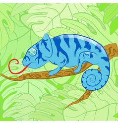 Chameleon on a branch against leaves EPS10 vector