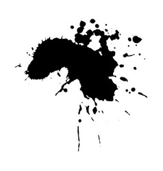 ebony ink blob vector image