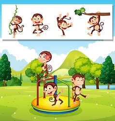 Monkeys playing in the park vector image vector image