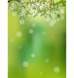Summer in the forest abstract natural EPS 10 vector image
